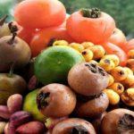 خواص میوه های پاییزی را ببینید! + اینفوگرافیک