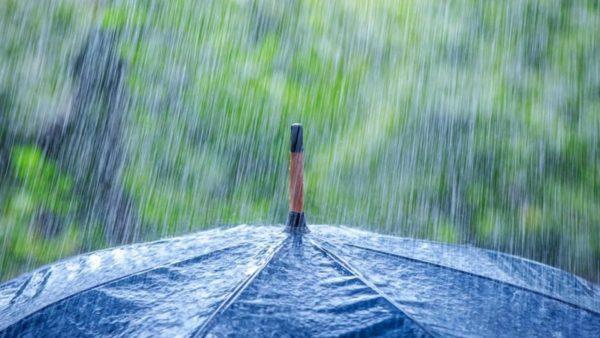 پیش بینی بارش باران در پاییز ۹۸ در ۲۰ استان | برف در برخی مناطق!!