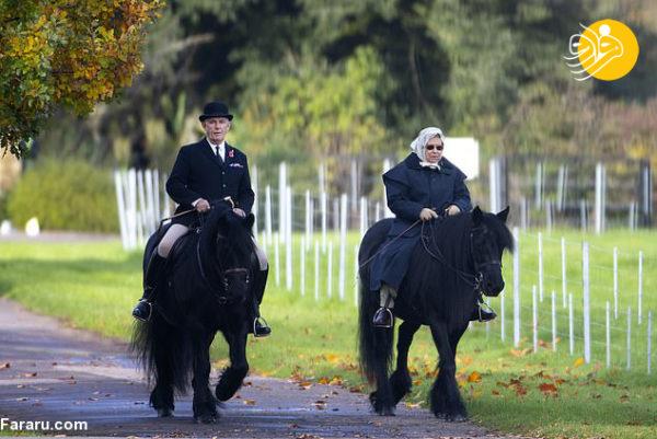 اسب سواری ملکه انگلیس
