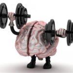 تقویت مغز و حافظه | این خوردنیها مغزتان را مثل کامپیوتر به کار می اندازد!