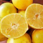 خواص لیمو شیرین | میوه عجیبی که باید با آن حمام کرد!!
