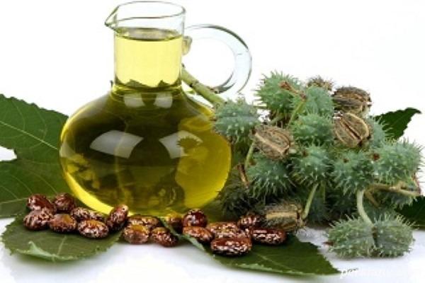 خواص بی نظیر روغن کرچک , بهترین روغن گیاهی برای پوست!