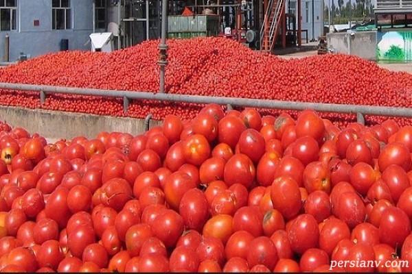گرانی گوجه