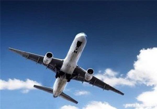 نجات یافتگان هواپیمای اکراینی