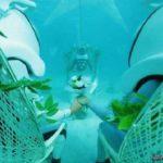 ازدواج زیر آب ؛ مراسم ازدواج زوج تایلندی در زیر آب!
