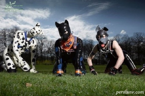 جولان همجنسگرایان به سبک انسان سگ نما
