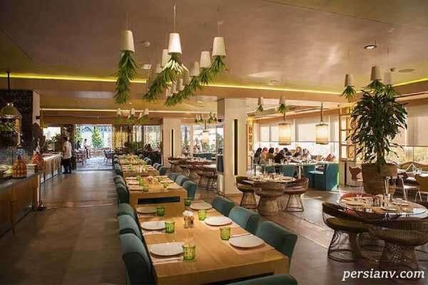 حرکت غیراخلاقی در سرو غذا در رستوران تهرانی