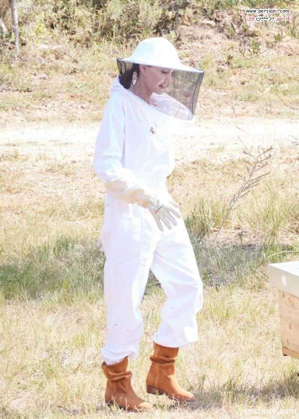 لباس زنبورداری آنجلینا جولی