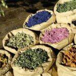 ۵ داروی گیاهی برای افزایش میل جنسی