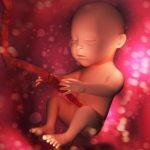 حرکت جنین در شکم چگونه است؟/ چرا جنینم حرکت نمی کند؟