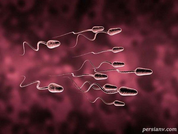 بارداری با آی یو آی و احتمال دوقلوزایی