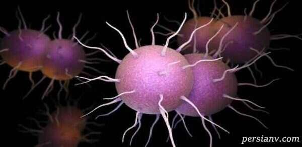 با عفونت سوزاک (گنوکوک) در بارداری آشنا شوید