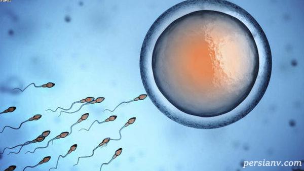 تاثیر اسپرم ضعیف مرد و بارداری ناموفق در آنان