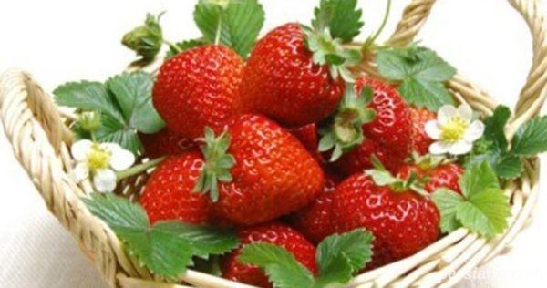 توت فرنگی در بارداری | چرا خانم های باردار باید توت فرنگی بخورند؟