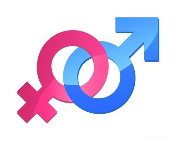 محصولات زناشویی مفیدند یا مضر؟/خوردنی های افزایش میل جنسی کدامند؟