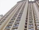 اشتباه مرگبار نظافتچی طبقه بیستم جان دختر ۱۱ ساله را در خیابان گرفت