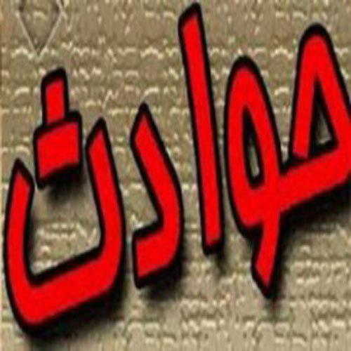 مرد فداکار قربانی دستگیری سارق