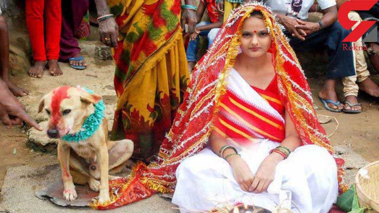 دختر نوجوان هندی با یک سگ ازدواج کرد!