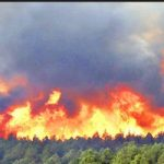 آتشسوزی در پیله کوه فیروز البرز ادامه دارد