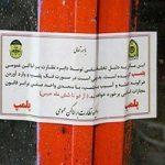 کشف ۴۵۰ کیلو گوشت الاغ، خرس، گراز و مرغ فاسد در جنوب تهران!