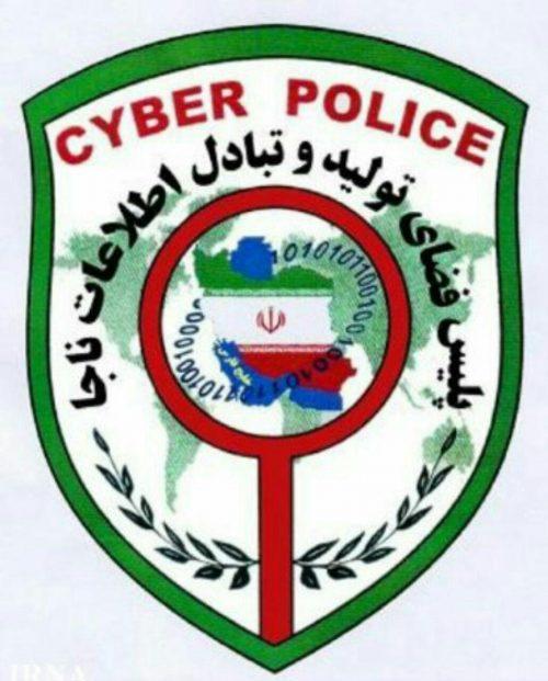 دستگیری سارق نوجوان اینترنتی