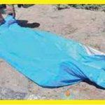 قتل طلافروش ربوده شده پس از سرقت !