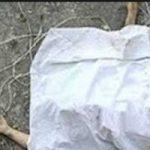 ماجرای قتل زن جوان ایرانی توسط دو افغان در پارک چیتگر!!