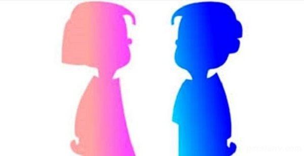 دو جنسیتی