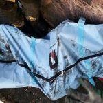 کشف دو جسد در انباری مجتمع مسکونی