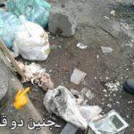 هولناک ترین عکس جنین دوقلو سقط شده در سطل زباله
