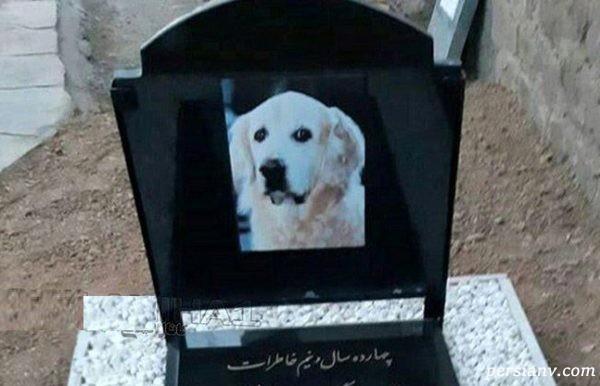 مراسم خاکسپاری سگ
