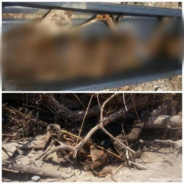کشف جسد در رودخانه