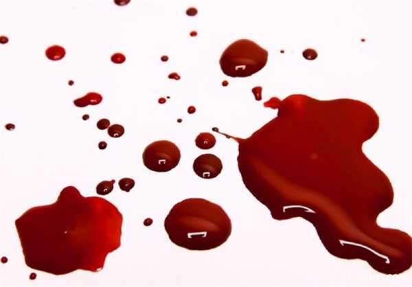قتل شوهر بلاگر