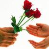 فال و طالع بینی جدید گل و گلبرگ