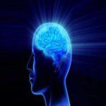 فال و طال بینی جالب نیم کره های مغز
