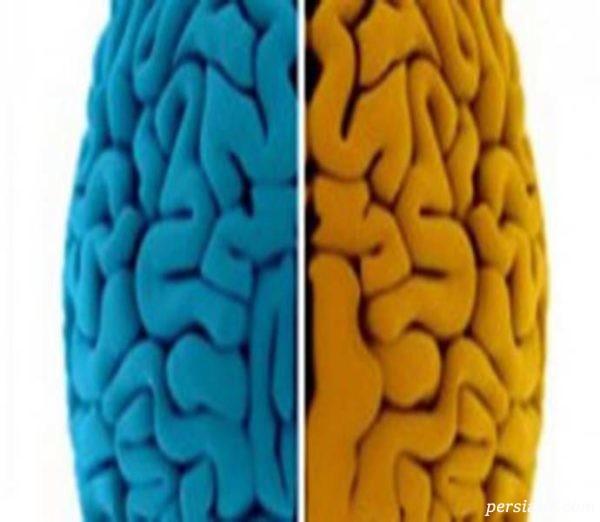 طالع بینی نیمکره های مغز