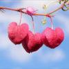 شخصیت شناسی جالب ، شما چگونه به عشق می نگرید !