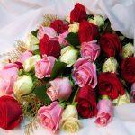 فال گل و شخصیت شناسی از روی گل ماه تولد شما