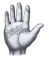 طالع بینی با نحوه خواندن سریع خطوط دست