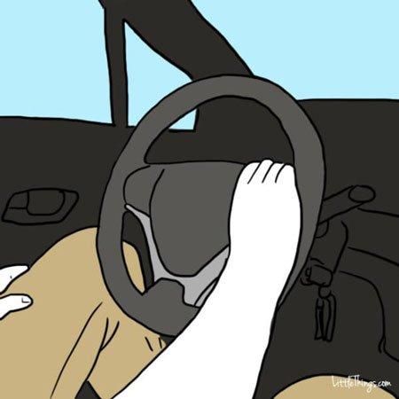 شخصیت شناسی از روی گرفتن فرمان خودرو