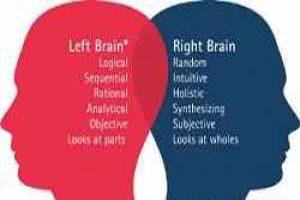 طالع بینی شخصیت افراد از روی نیم کره های راست و چپ مغز