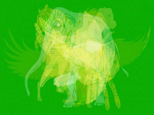 شخصیت شناسی از روی انتخاب حیوان