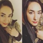 واکنش تاملبرانگیز علی ضیاء به مرگ گربه هانیه توسلی