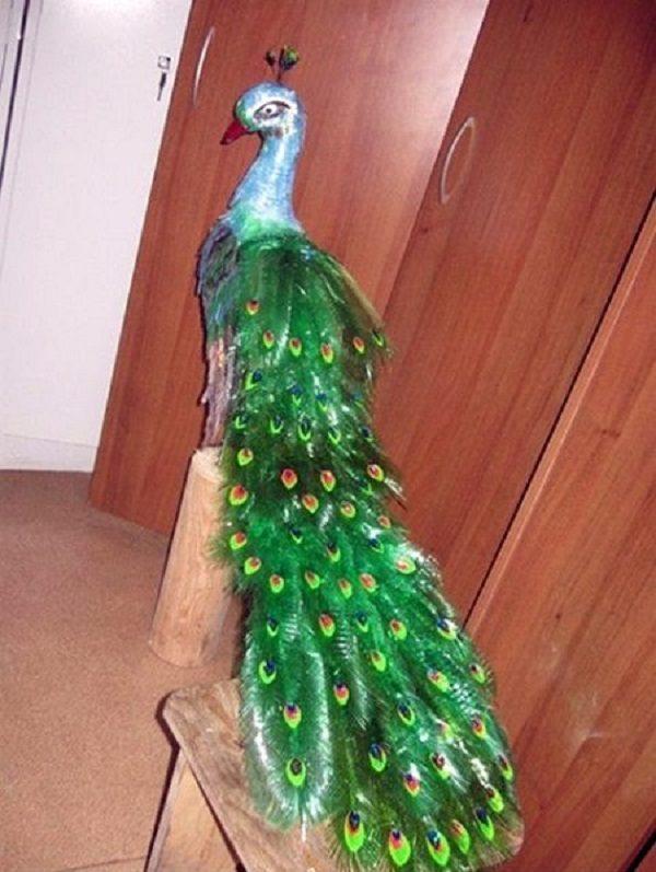 ساخت طاووس با بطری آب معدنی