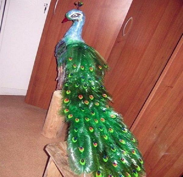 آموزش ساخت طاووس زیبا با بطری آب معدنی + تصاویر