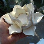 جاشمعی | ساخت جاشمعی با خمیر گلسازی