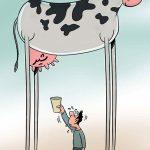 کاریکاتور گرانی گوشت و شیر برای شما