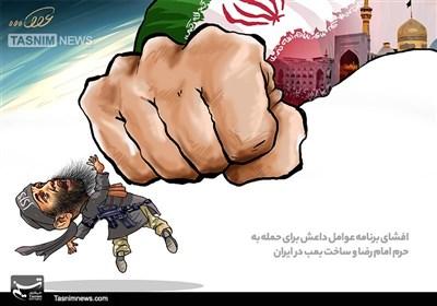کاریکاتور حمله به حرم امام رضا