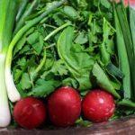 عواقب نگهداری سبزی نشسته در یخچال