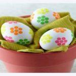 نکاتی مهم در مورد تخم مرغ آب پز